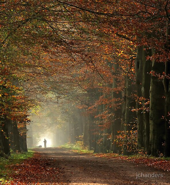 Taking out the dog on an autumnal day by jchanders