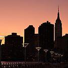 Manhattan Skyline at Twilight by Ellen McKnight