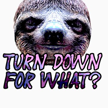 Turn Down For What? Sloth by MattsStuff
