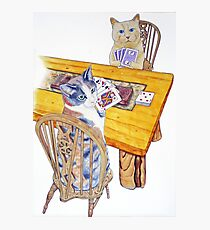 Cats playing Cribbage Photographic Print