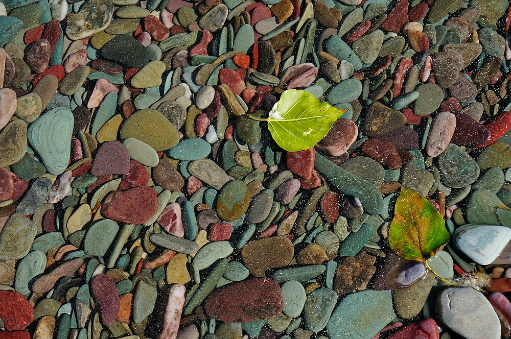 Coloured Stones by Harry Oldmeadow