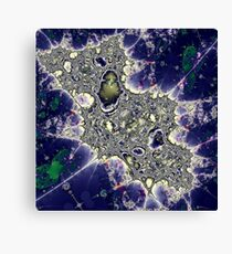 A Universe Within Canvas Print
