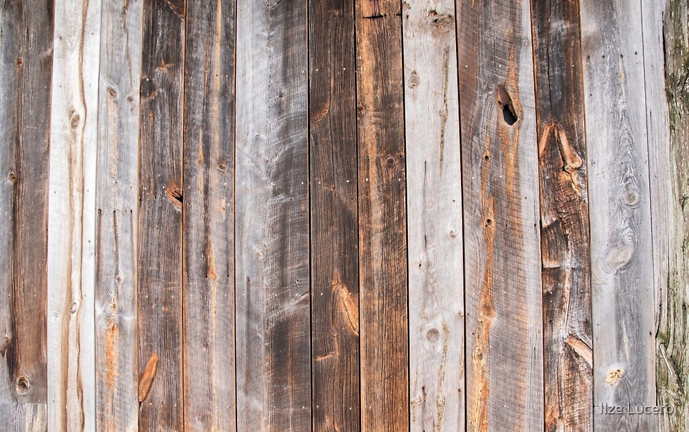 Wooden Background by Ilze Lucero