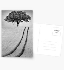 The Tree Postcards