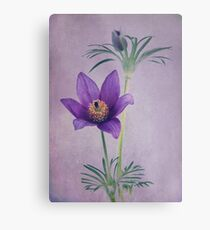 Easter Flower Metal Print