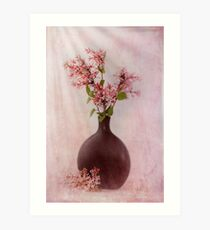 Study In Pink Art Print