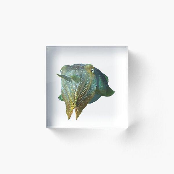 Tintenfisch abstrakt | Schillernde Sepia |  Acrylblock