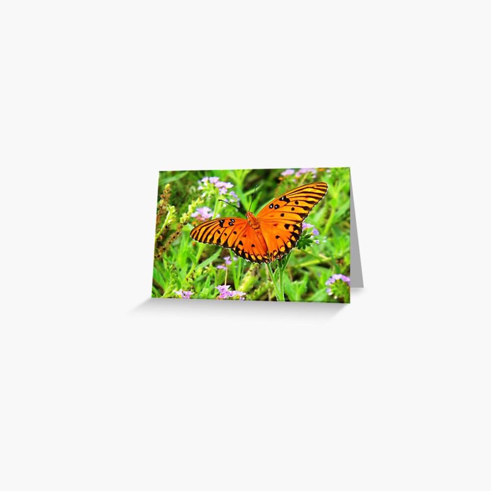 Orange Butterfly Windows From Heaven Greeting Card