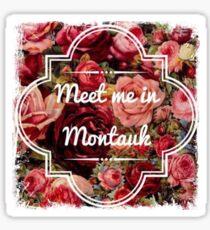 Eternal Sunshine - Meet Me In Montauk Sticker
