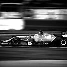 F1  by PerkyBeans