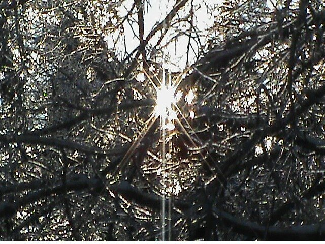 Ice storm sun by beckalbright