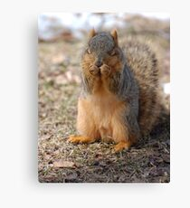 Thank You, God, for the Peanuts.  May I please have some more? Canvas Print