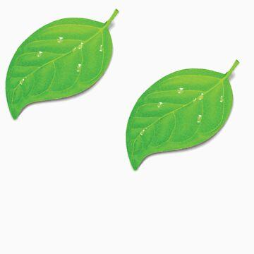 Coda leaf logo  by iepster
