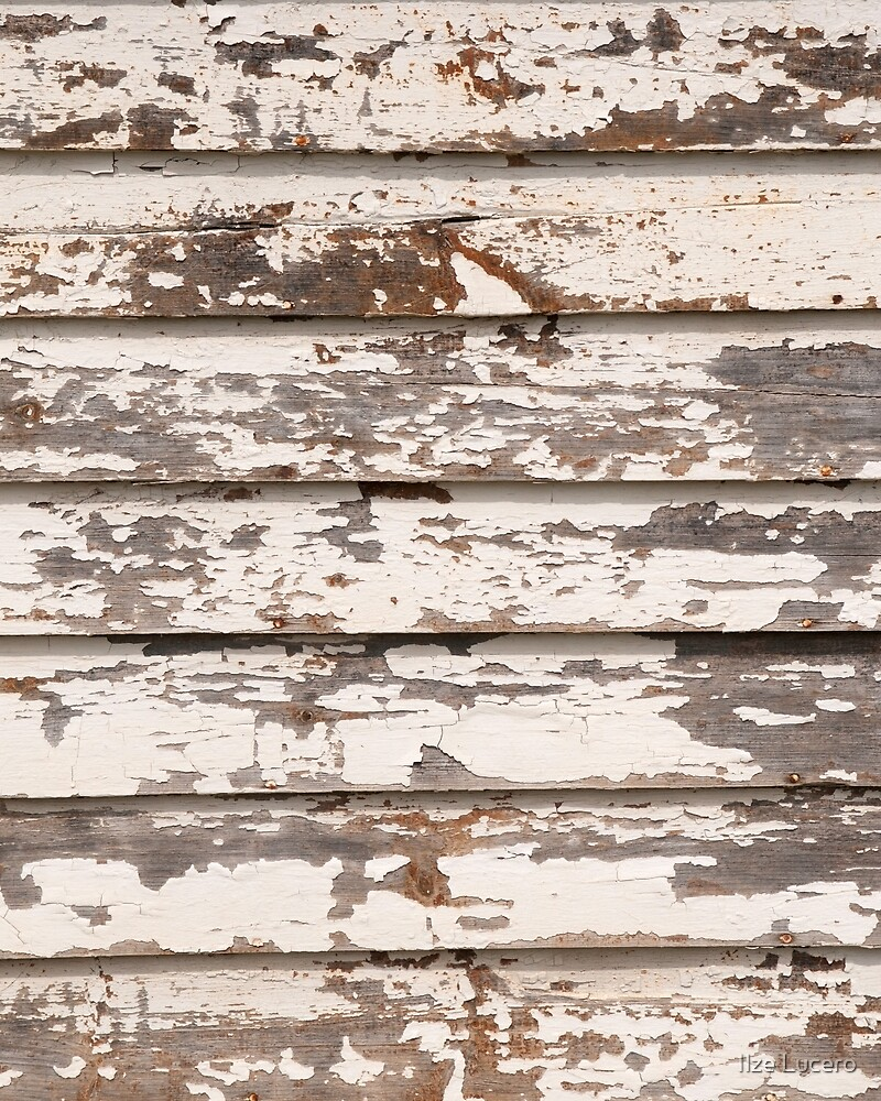 Grungy wooden background by Ilze Lucero