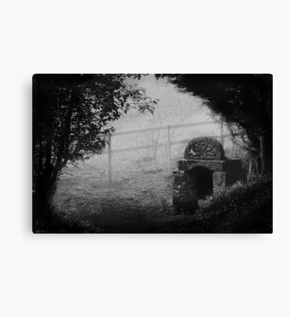 Ladywell In The Mist Canvas Print