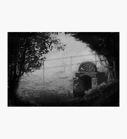 Ladywell In The Mist Photographic Print