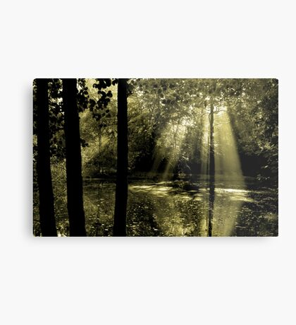 Morning in Bucklebury Metal Print