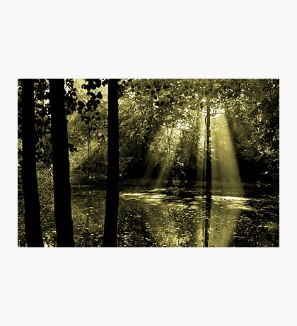 Morning in Bucklebury Photographic Print