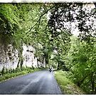 Cycling in France - Road to Sarlat by Marlene Hielema