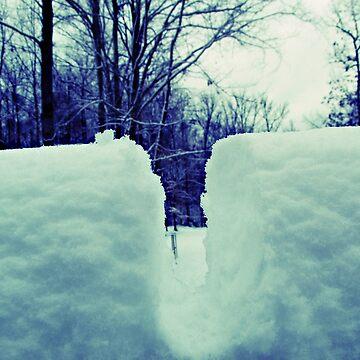 Dead of winter by K3LLIE3