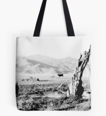 Cows Graze at the Bottom of the Lake Tote Bag