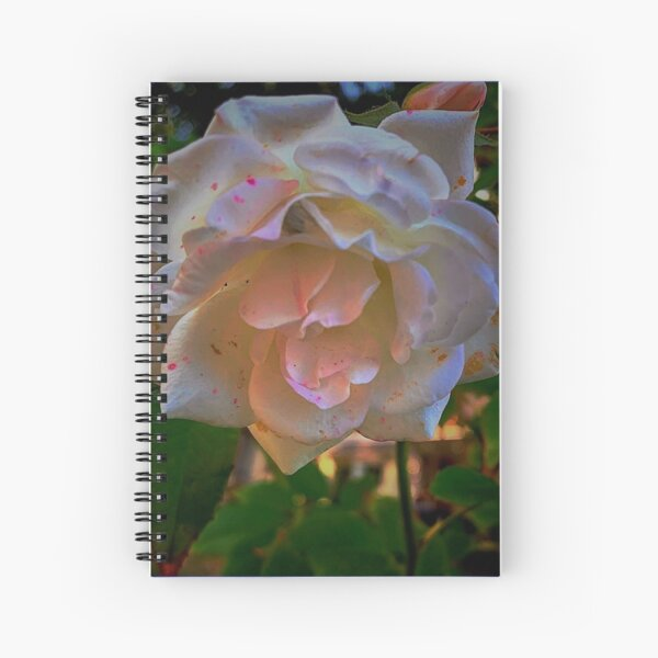 White roses on a Blue  sky By Yannis Lobaina  Spiral Notebook
