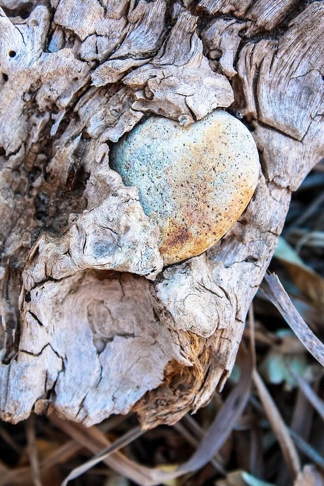 Rock Love by DawnSuzette