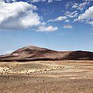 Lanzarote Landscape by T M B