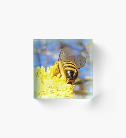 Pure Rich Honey Acrylic Block