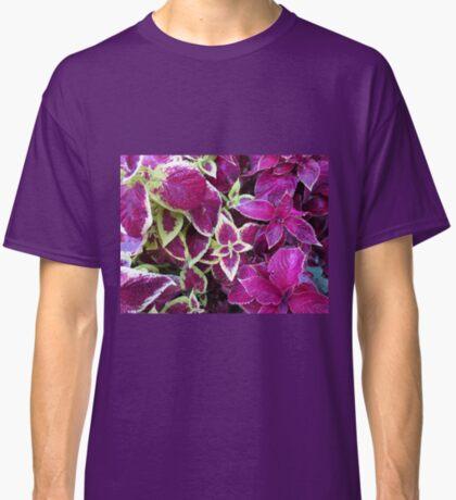 Herbst Coleus Classic T-Shirt
