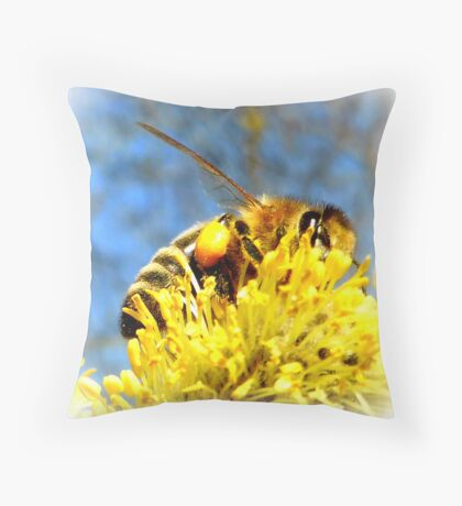 Bee with pollen on pussy willow Throw Pillow