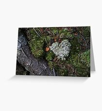 Mossy Heart Greeting Card