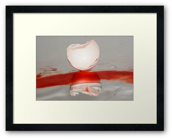 Broken eggshell abstract by Merrimon