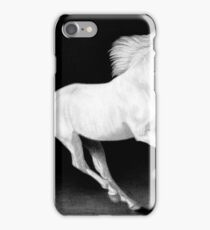 The Freedom to Fly iPhone Case/Skin