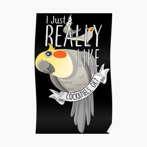 I Just Really Like Cockatiels, OK?  Poster