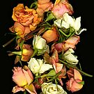 Faded Roses 4 by Daniel Sorine