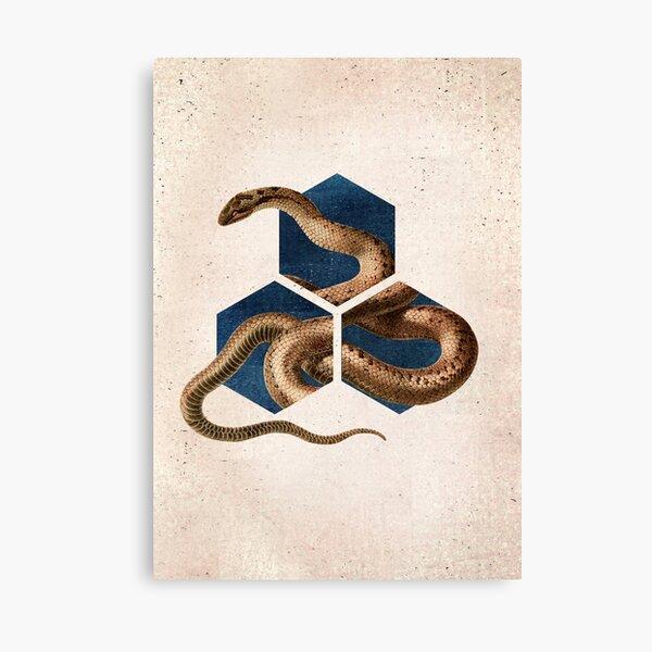 Snake Dimension Geometrical Art Canvas Print