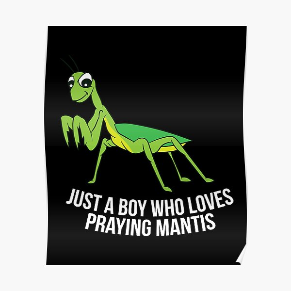 Just a Boy Who Loves Praying Mantis Poster