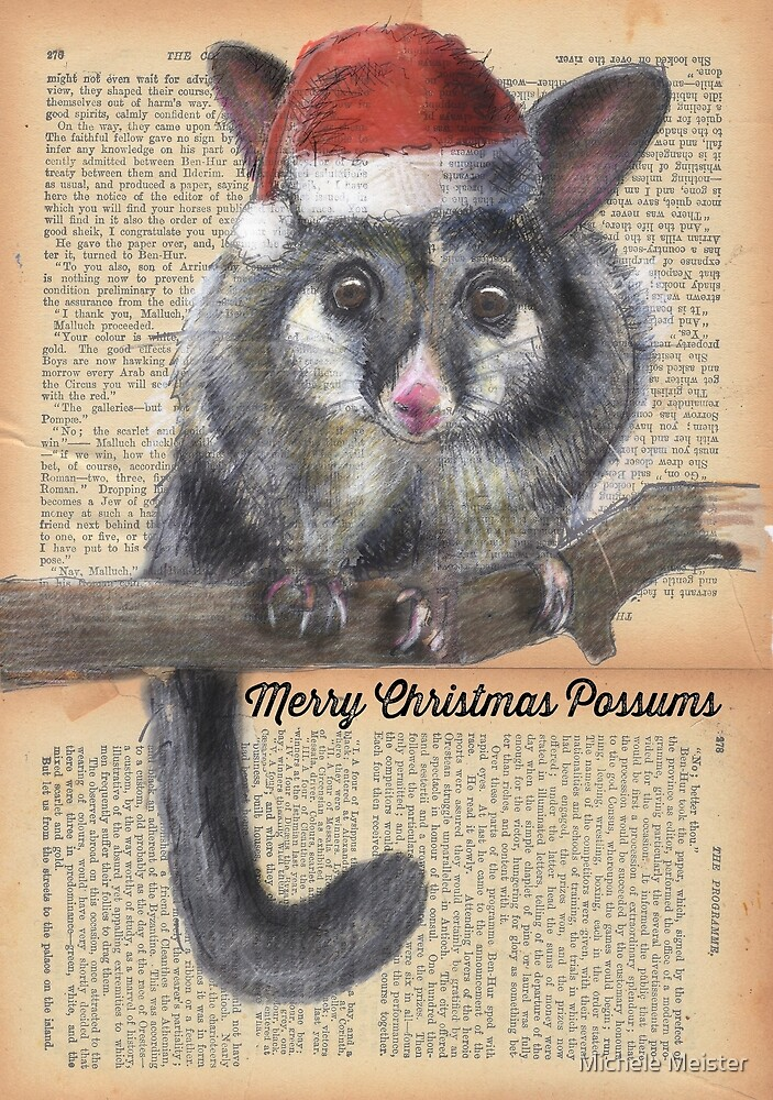 Christmas Possum by Michele Meister