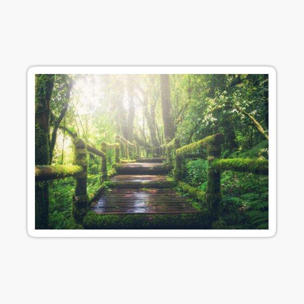 Find your path Sticker