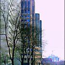 University Street ! by Elfriede Fulda