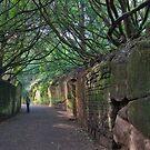 Warwick Castle Wall  by StephenRB