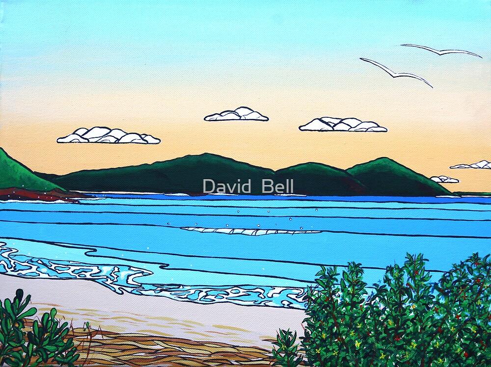 Shelly Beach by David Bell
