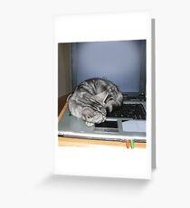 Kitten finds a warm spot Greeting Card