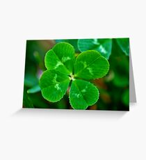 lucky clover, lucky day Greeting Card