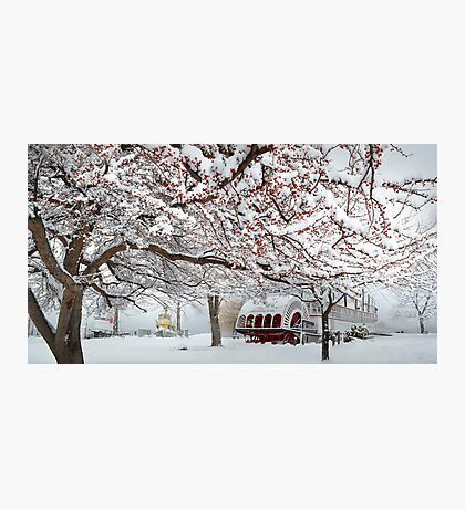 winter bliss Photographic Print