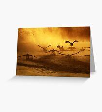 20.3.2014: Swans at River I Greeting Card
