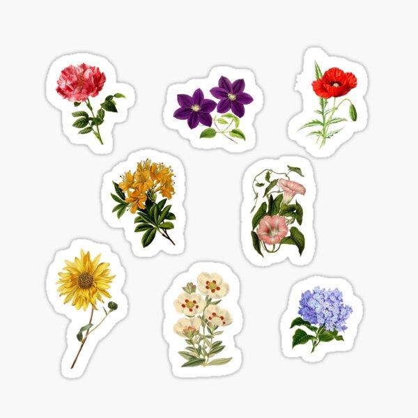 Vintage Flowers pack 1 Sticker