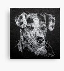 Jack. Canvas Print