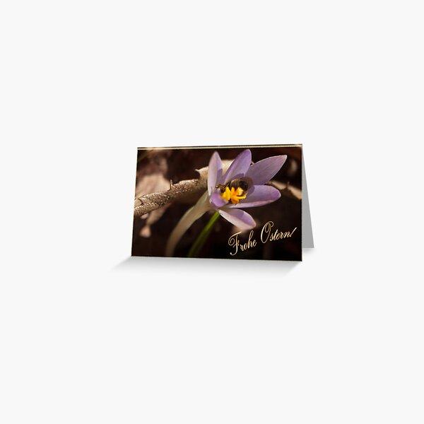 Frühlingsgruß - Krokus Greeting Card
